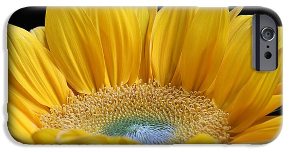 Nature Divine iPhone Cases - Sometimes I Get a Good Feeling iPhone Case by Juergen Roth