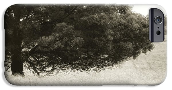 Solitude Photographs iPhone Cases - Somewhere to Dream iPhone Case by Amy Weiss