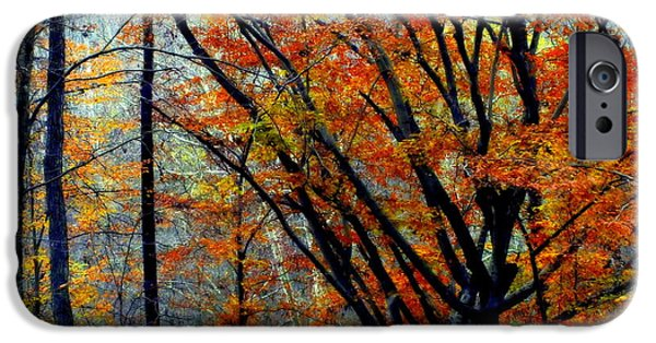 Smokey Mountains iPhone Cases - SONG of AUTUMN iPhone Case by Karen Wiles