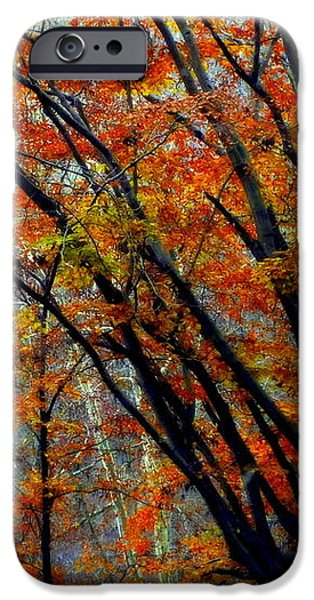 SONG of AUTUMN iPhone Case by KAREN WILES