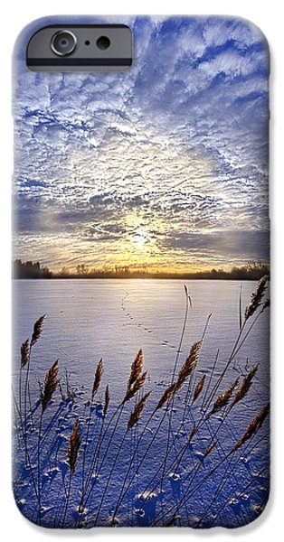 Meadow Photographs iPhone Cases - Songs of Surrender iPhone Case by Phil Koch