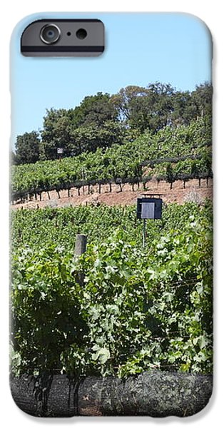 Sonoma Vineyards In The Sonoma California Wine Country 5D24503 iPhone Case by Wingsdomain Art and Photography