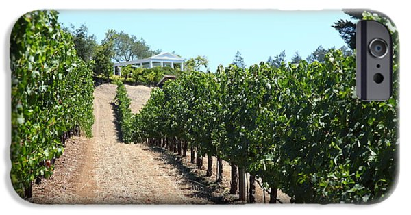 Valley Of The Moon iPhone Cases - Sonoma Vineyards In The Sonoma California Wine Country 5D24507 iPhone Case by Wingsdomain Art and Photography