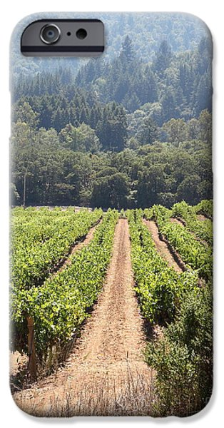 Pastoral Vineyard iPhone Cases - Sonoma Vineyards In The Sonoma California Wine Country 5D24515 vertical iPhone Case by Wingsdomain Art and Photography