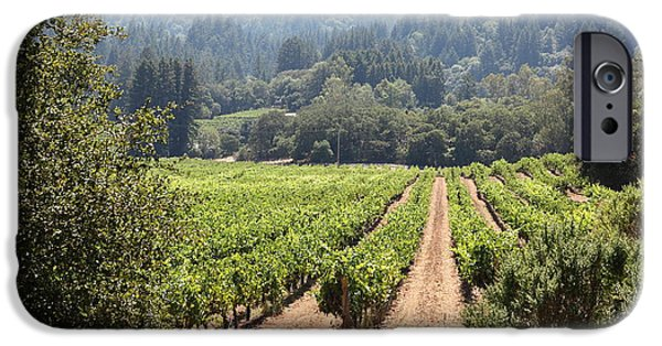 Pastoral Vineyard iPhone Cases - Sonoma Vineyards In The Sonoma California Wine Country 5D24515 iPhone Case by Wingsdomain Art and Photography