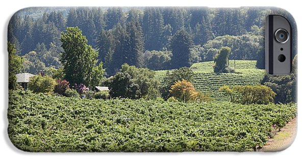 Pastoral Vineyard iPhone Cases - Sonoma Vineyards In The Sonoma California Wine Country 5D24585 iPhone Case by Wingsdomain Art and Photography