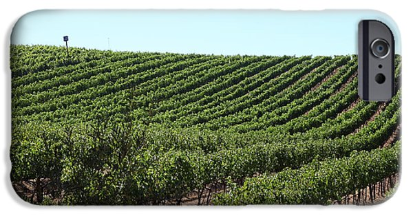 Pastoral Vineyard iPhone Cases - Sonoma Vineyards In The Sonoma California Wine Country 5D24588 iPhone Case by Wingsdomain Art and Photography