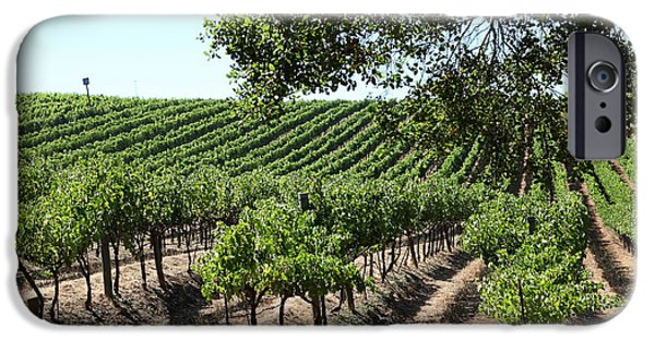 Pastoral Vineyard iPhone Cases - Sonoma Vineyards In The Sonoma California Wine Country 5D24594 iPhone Case by Wingsdomain Art and Photography