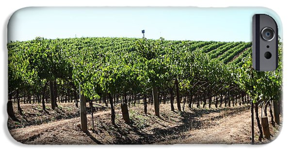 Pastoral Vineyard iPhone Cases - Sonoma Vineyards In The Sonoma California Wine Country 5D24598 iPhone Case by Wingsdomain Art and Photography