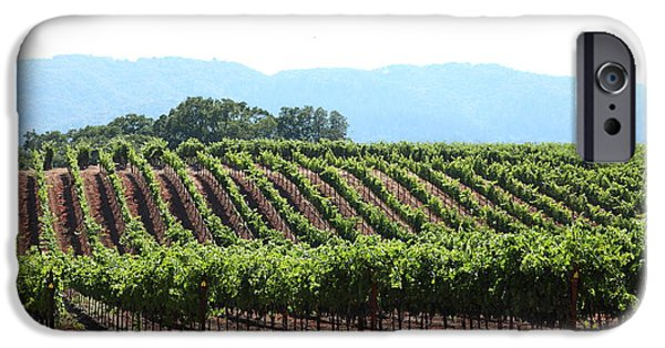 Pastoral Vineyard iPhone Cases - Sonoma Vineyards In The Sonoma California Wine Country 5D24625 iPhone Case by Wingsdomain Art and Photography