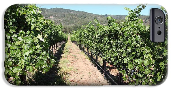 Pastoral Vineyard iPhone Cases - Sonoma Vineyards In The Sonoma California Wine Country 5D24638 iPhone Case by Wingsdomain Art and Photography