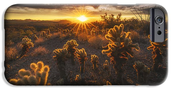 Peter Coskun iPhone Cases - Sonoran Burn iPhone Case by Peter Coskun