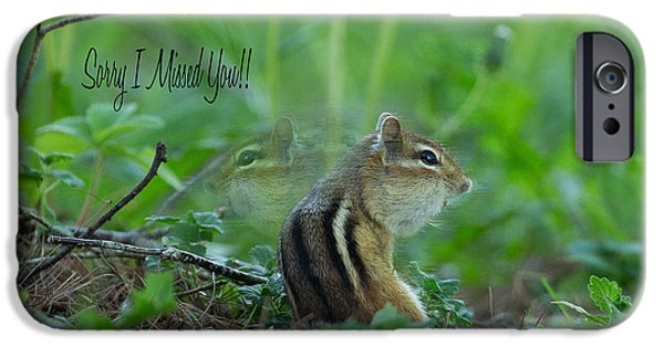 Chipmunk iPhone Cases - Sorry I Missed You iPhone Case by Everet Regal