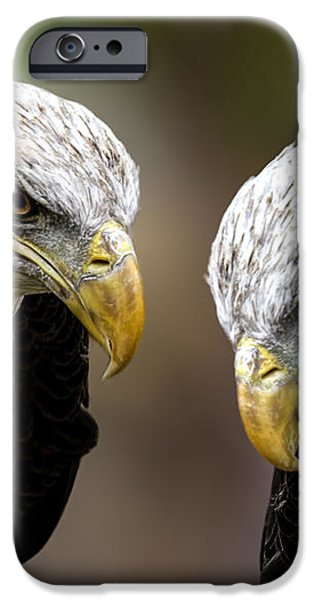 Soul Mates iPhone Case by Bob Orsillo