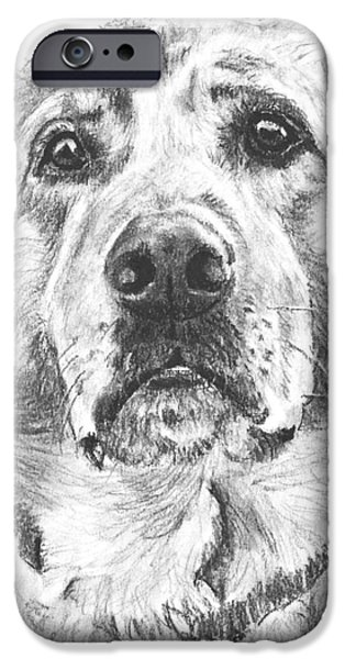 Dog Close-up Drawings iPhone Cases - Soulful Lab Face iPhone Case by Kate Sumners