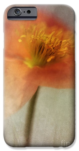 Flora Photographs iPhone Cases - Soulful Poppy iPhone Case by Priska Wettstein