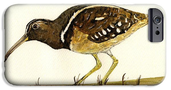 Nature Study Paintings iPhone Cases - South American Painted Snipe iPhone Case by Juan  Bosco