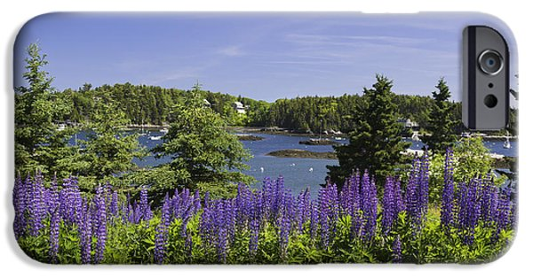 Maine Seascapes iPhone Cases - South Bristol and Lupine Flowers on the coast of Maine iPhone Case by Keith Webber Jr