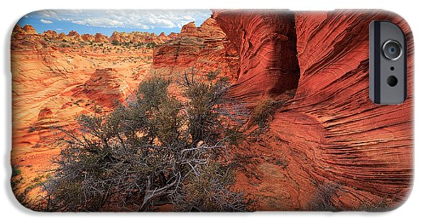 Harsh iPhone Cases - South Coyote Buttes Grand View iPhone Case by Inge Johnsson
