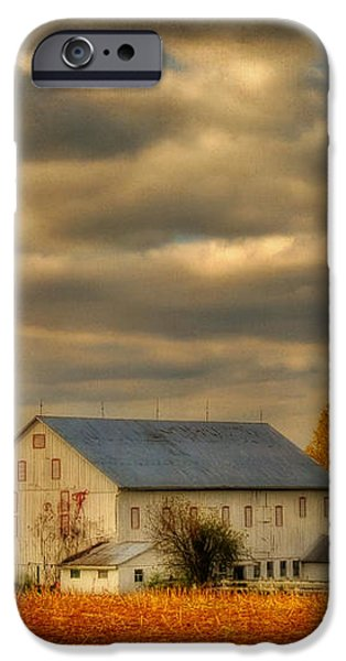 South For The Winter iPhone Case by Lois Bryan