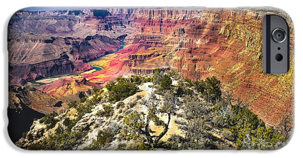 Haybale iPhone Cases - South Rim From The Butte iPhone Case by Robert Bales