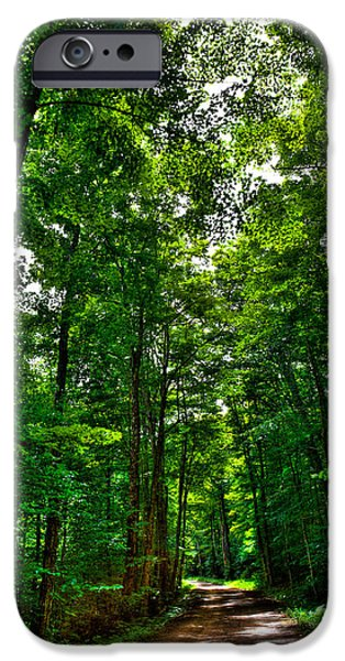 Old Country Roads Photographs iPhone Cases - South Rondaxe Road - Old Forge iPhone Case by David Patterson
