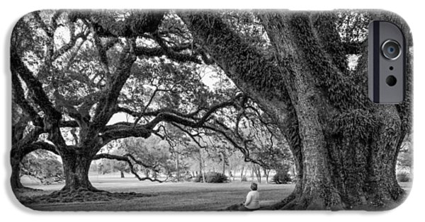 Oak Alley Plantation iPhone Cases - Southern Dreamer bw iPhone Case by Steve Harrington