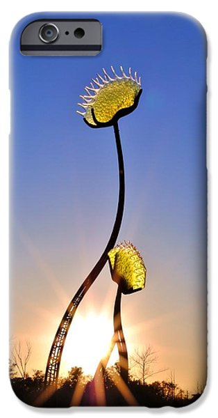 Southern Hospitality Sculpture iPhone Case by Kelly Nowak