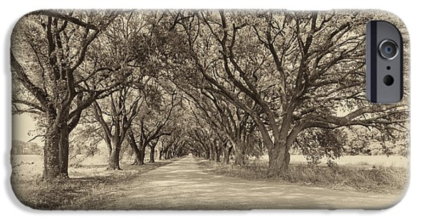 Overhang iPhone Cases - Southern Journey sepia iPhone Case by Steve Harrington