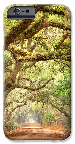 Overhang iPhone Cases - Southern Road iPhone Case by Denis Tangney Jr