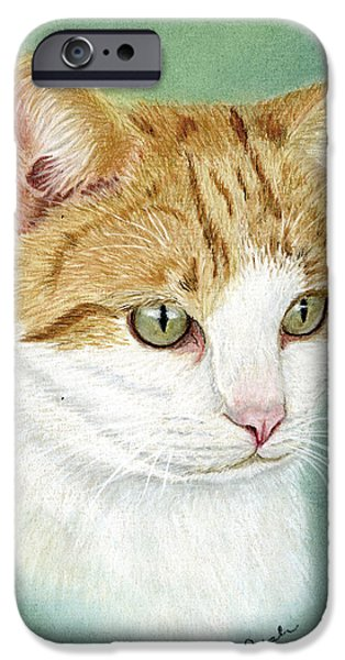 Recently Sold -  - Pastel iPhone Cases - Sox iPhone Case by Sarah Dowson