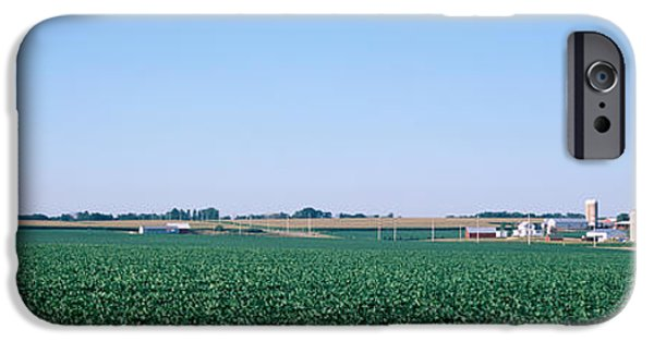 Illinois Barns iPhone Cases - Soybean Field Ogle Co Il Usa iPhone Case by Panoramic Images