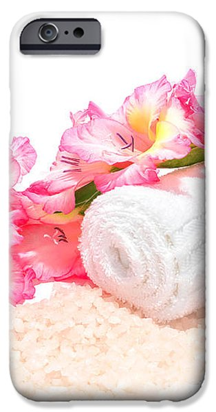 Spa Gladiolus iPhone Case by Olivier Le Queinec
