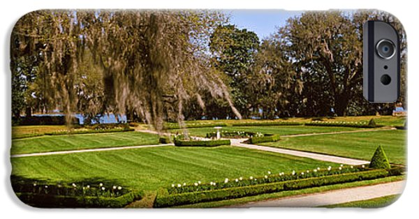 Garden Scene iPhone Cases - Spanish Moss Covered Trees In A Garden iPhone Case by Panoramic Images