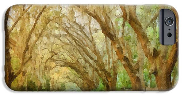 Overhang iPhone Cases - Spanish Moss - Symbol of the South iPhone Case by Christine Till