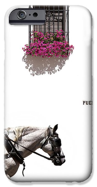 Malaga iPhone Cases - Spanish Scene iPhone Case by Mal Bray