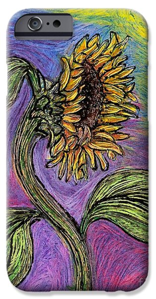 Botanical Drawings iPhone Cases - Spanish Sunflower iPhone Case by Sarah Loft