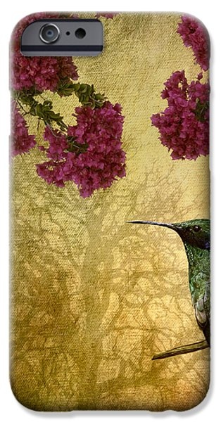 Botany iPhone Cases - Sparkling Violet Ear Hummingbird iPhone Case by Susan Candelario