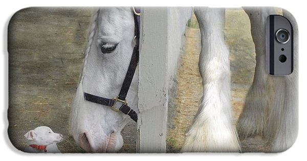 Horse Photographs iPhone Cases - Sparky and Sterling Silvia iPhone Case by Fran J Scott