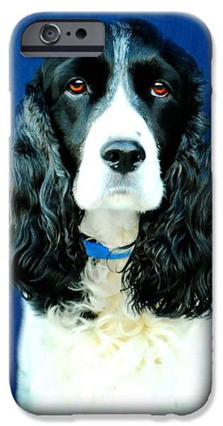 Dog Close-up Photographs iPhone Cases - Speaking of Annie iPhone Case by Diana Angstadt