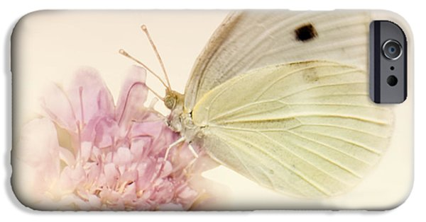 Cabbage White Butterfly iPhone Cases - Spellbinder iPhone Case by Betty LaRue