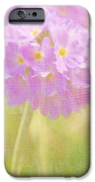 Texture Flower iPhone Cases - Sphere Florale - 01tt01a iPhone Case by Variance Collections