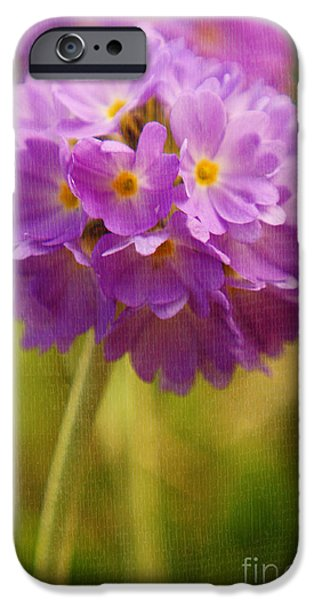Texture Flower iPhone Cases - Sphere Florale - 07at01 iPhone Case by Variance Collections