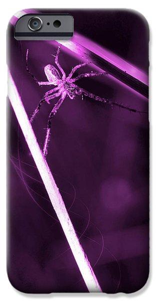 Arachnida iPhone Cases - Spider on sticks iPhone Case by Toppart Sweden
