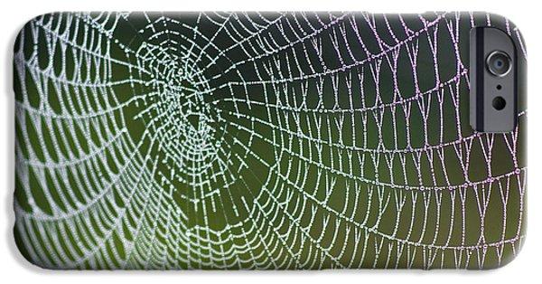 Koehrer-wagner_heiko iPhone Cases - Spider Web iPhone Case by Heiko Koehrer-Wagner