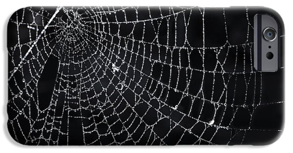 Thread iPhone Cases - Spiderweb with dew iPhone Case by Elena Elisseeva