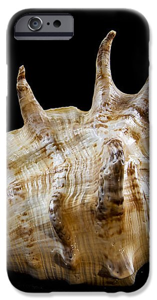 Spikes back side iPhone Case by Jean Noren