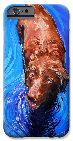 Chocolate Labrador Retriever Paintings iPhone Cases - Spin Cycle iPhone Case by Molly Poole