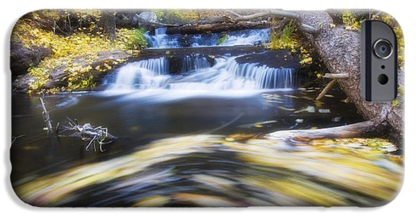 Oak Creek iPhone Cases - Spinning Autumn iPhone Case by Peter Coskun