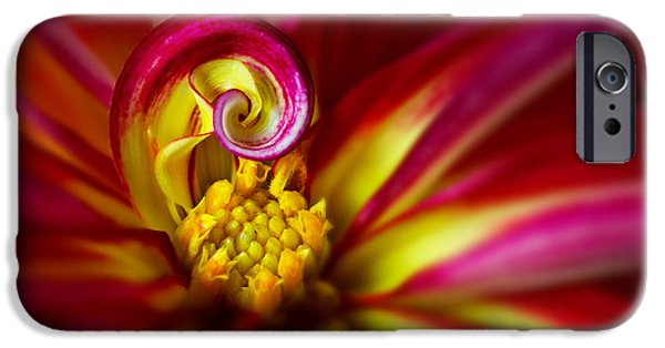 Abstractions iPhone Cases - Spiral iPhone Case by Mary Jo Allen